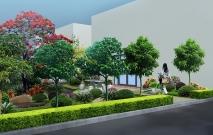 陈拾园林告诉您花卉应该怎样进行养护?